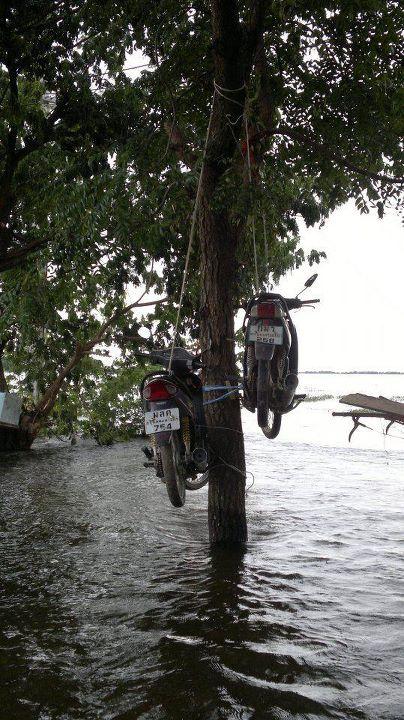 Motorcykelparkering i ett översvämmat Thailand. Källa: Thai Flood Hacks