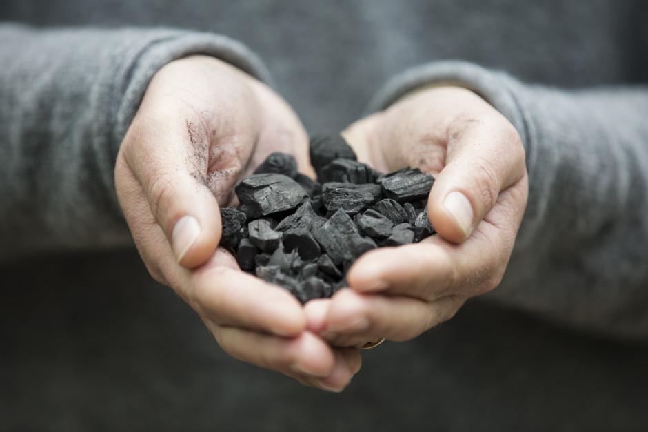 Biokol kan vara ett sätt att minska koldioxidhalterna i atmosfären och därmed hejda klimatförändringarna. Bild: Branschföreningen Biokol Sverige