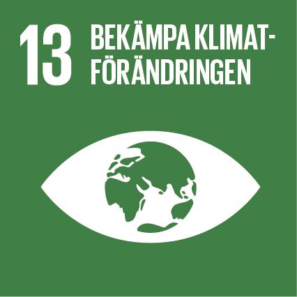 Bekämpa klimatförändringen - mål 13 av de globala målen för hållbar utveckling. Bild: UNDP Sverige