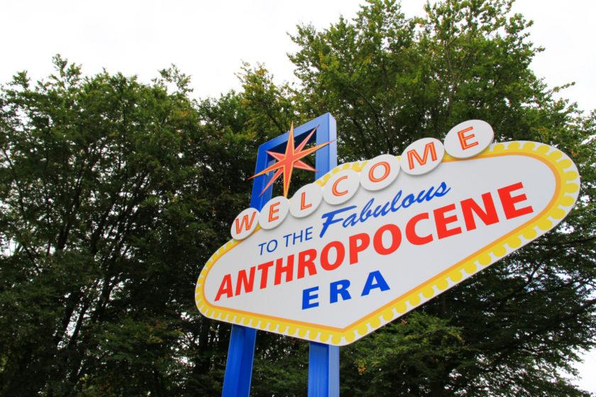 """""""Välkommen till den fantastiska epoken ANTRPOCEN"""" Bild: Habitus (2013), av Robyn Woolston, Edge Hill University, Ormskirk, Lancashire"""